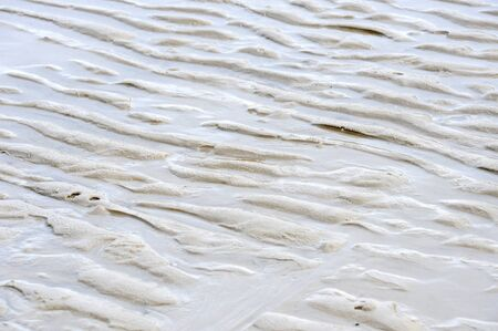close up view beach sand background Stock Photo - 13343169