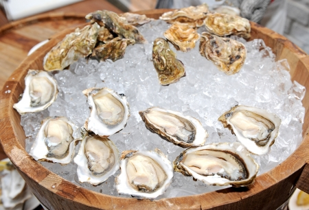 shucked: Oyster