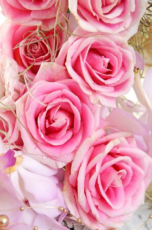 colorize: Background with roses