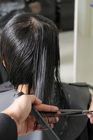 cutting hair at the hairdresser salon Stock Photo - 14438676