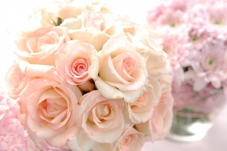 rosas blancas: Primer aument�
