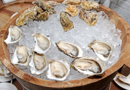 restaurant of Oysters in the shell photo