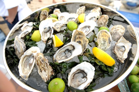 Oysters with lemon Stock Photo - 19328613