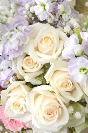 Boeket van prachtige bloemen Stockfoto - 19986863