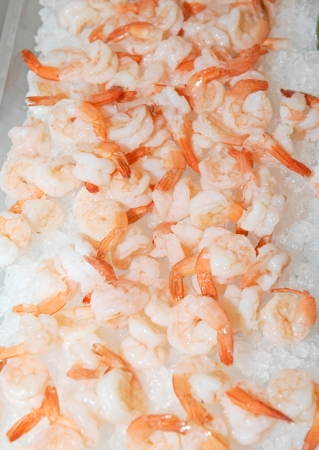 shrimp in closeup shot  photo