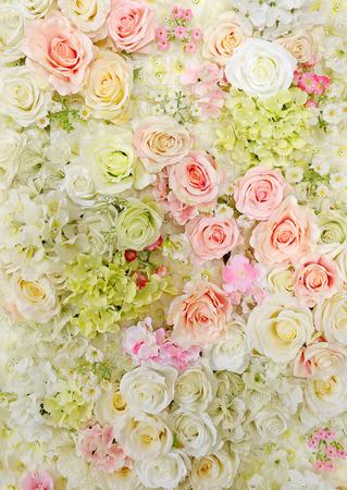 Wand Blume Standard-Bild - 47878942