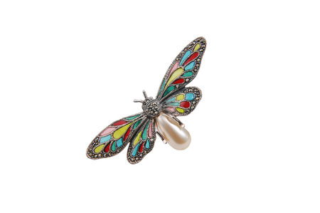 jewelery, and metal butterfly brooch isolated on white