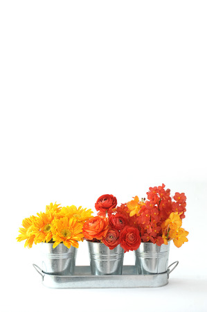 stainless steel flowers pot isolated on white background Stockfoto