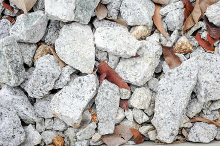 Stones construction rocks texture and dry leaves Stockfoto