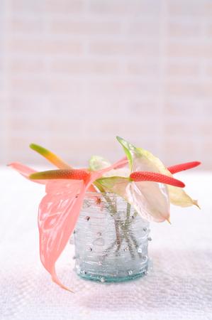 bouquet of anthurium flowers