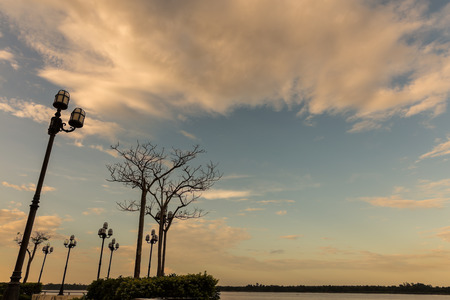 Street lamps on evening sky