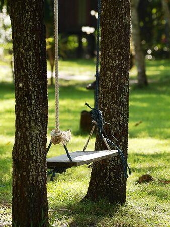 sylvan: Empty wooden swing in the garden