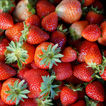 Background from freshly harvested strawberries, Fresh Strawberry Background Stock Photo - 104429974