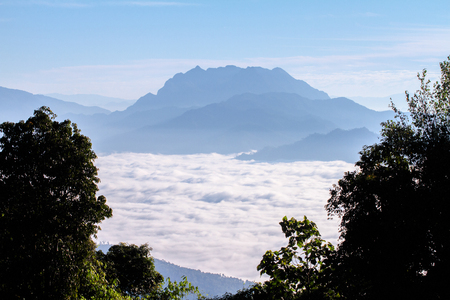 Pictures of trees and mountain views landscape  Beautiful sky And the sea of fog