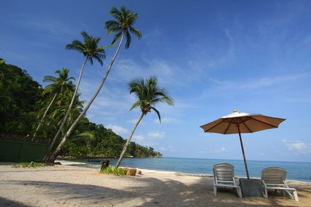 Koh Chang Island - coconut trees over a sandy white beach photo