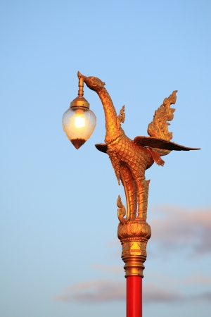 glod: The glod swan and light