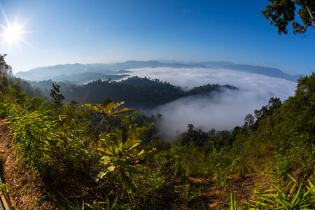 The sea of fog with forests as foreground  This place is in the Kaeng Krachan national park, Thailand  photo