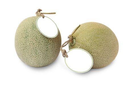 melons: cantaloupe melons