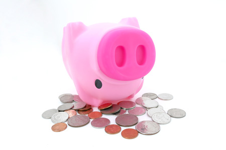 white piggy bank: piggy bank