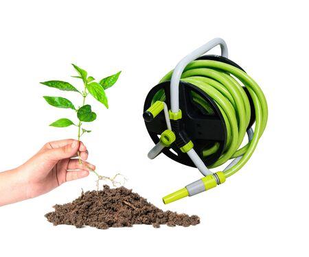 planted: hand planted a tree and sprayer garden hose