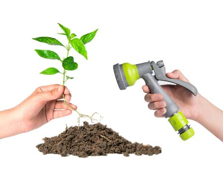 planted: planted a tree and sprayer garden hosego green concept Stock Photo