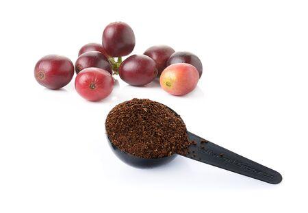coffee berry: coffee berry, coffee beans and coffee powder on white Stock Photo
