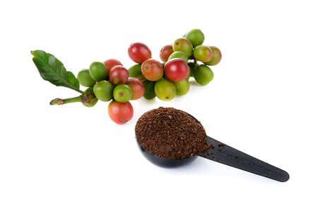 coffee berry: coffee berry and coffee powder on white background