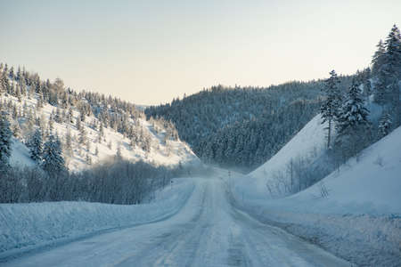 blue mountains tree frog: Road covered with snow winter snow mountains