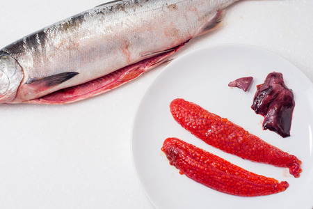 gutted: fresh gutted red fish salmon on white background Salmon roe