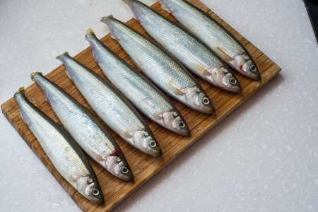 Fresh  smelt fishes on white background for food Stock Photo