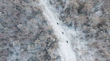Aerial view of a winter snow-covered pine forest. Winter forest texture. Stockfoto