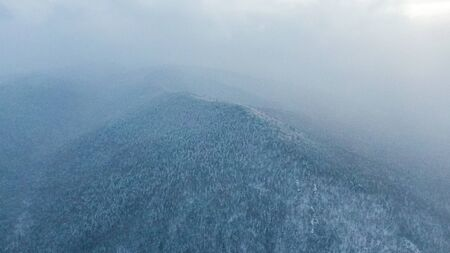 Aerial image from the top of snowy mountain pines in the middle of the winter