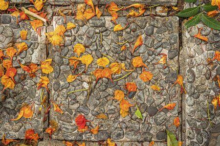 background stones flowers Thailand. orange and braun Stockfoto