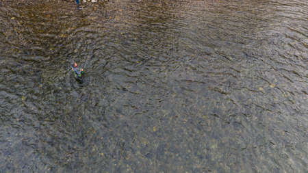 Fly Fishing in River with fishing line in motion. mountain fishing grayling fish