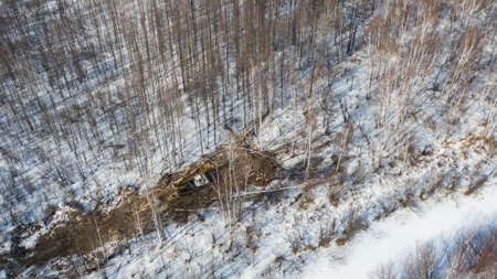 a tractor with machines in a forest in winter for cutting trees