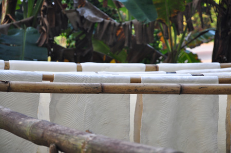 caoutchouc: Rubber Sheet from Latex on bamboo clothesline.Backgro und is Rubber Garden.Natural Rubber from Thailand. Stock Photo