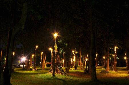night time: Night time garden at Chiang Mai University ,Thailand   Stock Photo