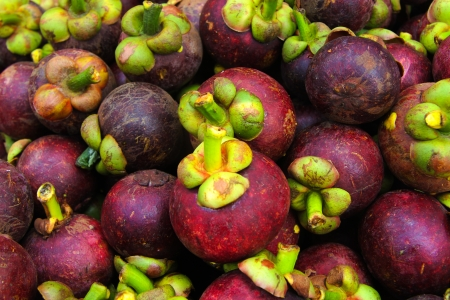 Mangosteen photo