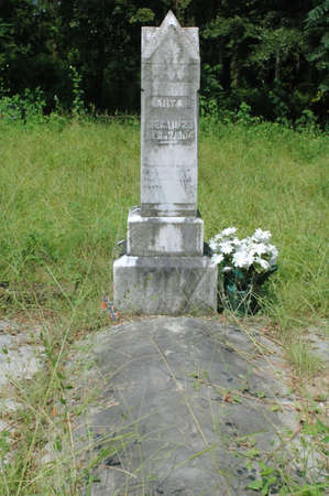 A neglected Confederate wifes grave in the old South.