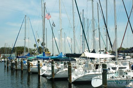 Yachts lined up at the Municipal Marina in St. Petersburg, Florida.