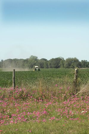 A tractor plows through the corn field in the springtime.
