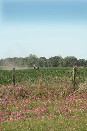Un trattore plows attraverso il campo di mais in primavera. Archivio Fotografico - 416258