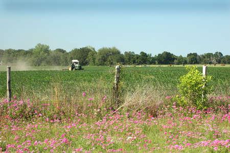 A tractor plows through a corn field in springtime. Foto de archivo