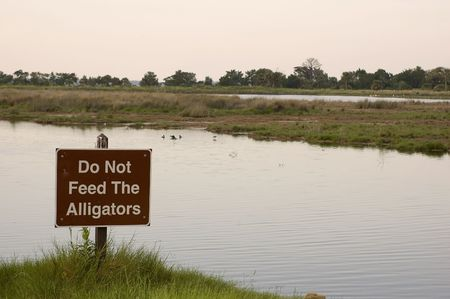 The sign warns people not to feed the alligators. 免版税图像