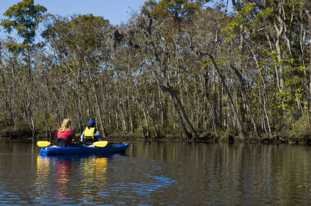 Kayaking the creek near the Suwannee River, Suwannee, Florida Foto de archivo