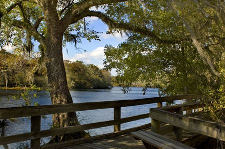 river bank: The peaceful boardwalk on the Suwannee River Stock Photo