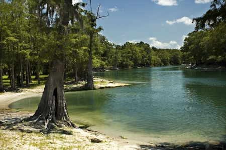 The beach on the Santa Fe River near Branford, Florida