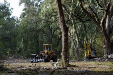 Heavy equipment is used to clear land. Zdjęcie Seryjne