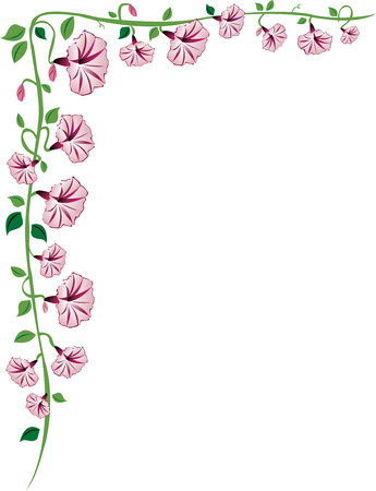 A morning glory vine border with pink flowers, leaves and buds. Ilustração