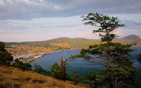 burrows: A view of the Anacortes Island Marina and homes on the hill overlooking Burrows Bay, Puget Sound, Washington. Stock Photo